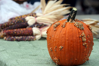Pumpkin and Indian corn, Ottawa Farmers Market, Kansas