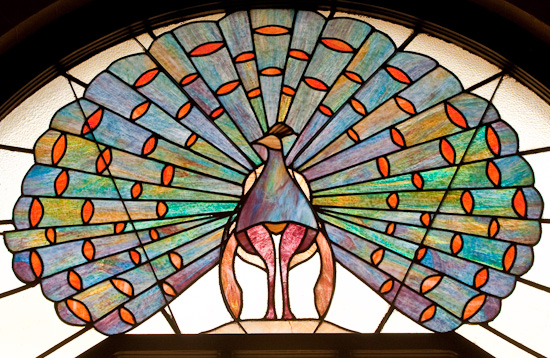 Hotel Baker peacock window-3527